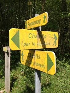 Chablis, A la croisée des chemins - avril 2013