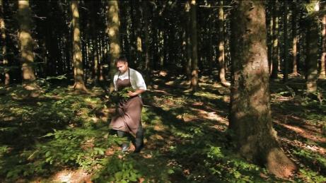 THORSTEN SCHMIDT en forêt