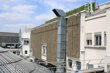 Un jardin vertical visible de la terrasse publique des Galeries Lafayette.