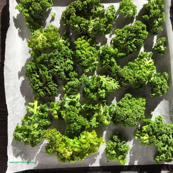 Kale - comment faire des chips de kale ?